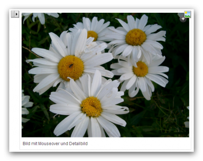 View on the Weblic image element in processing